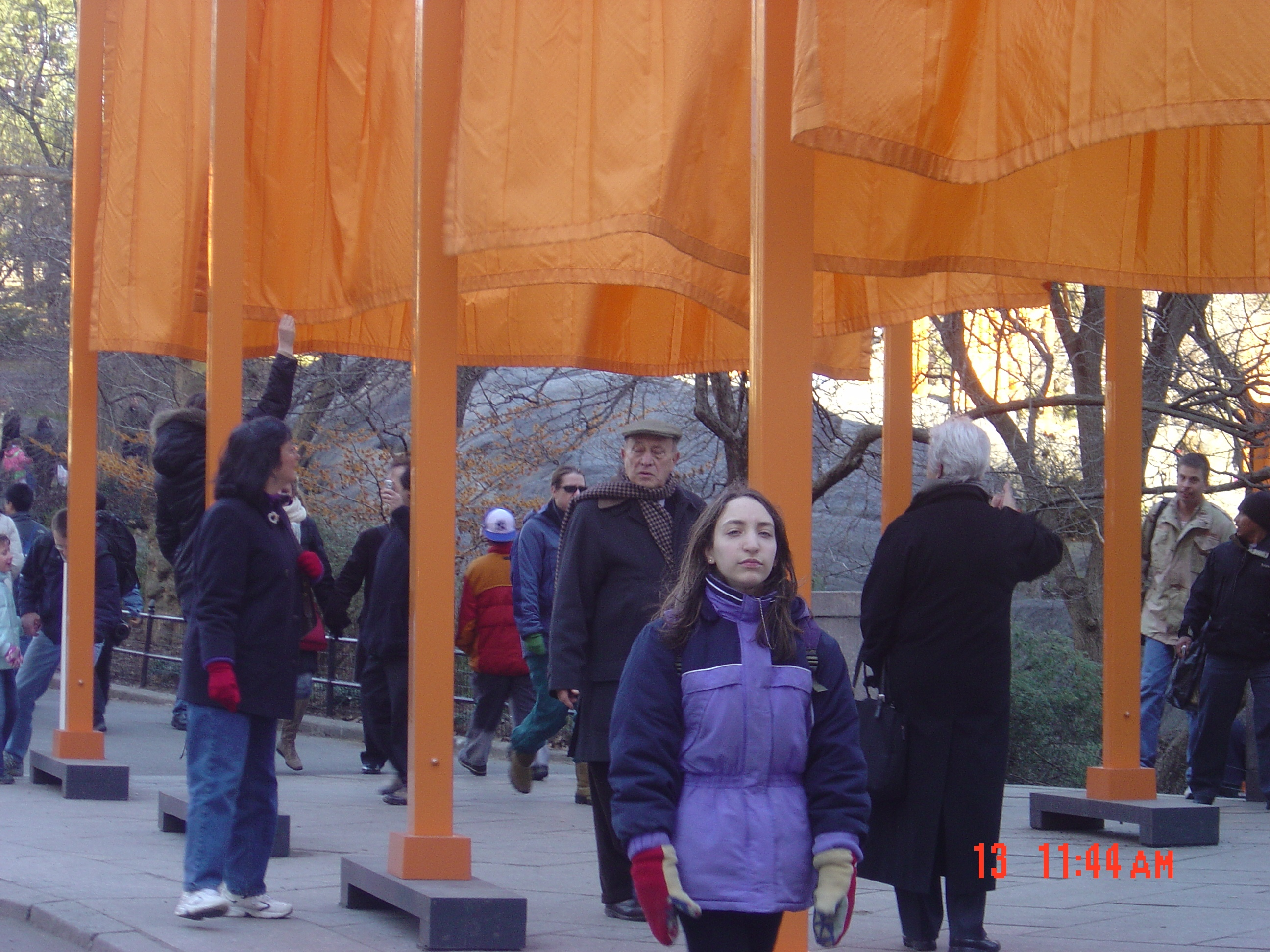 """The Gates"" in Central Park, 2/13/05"